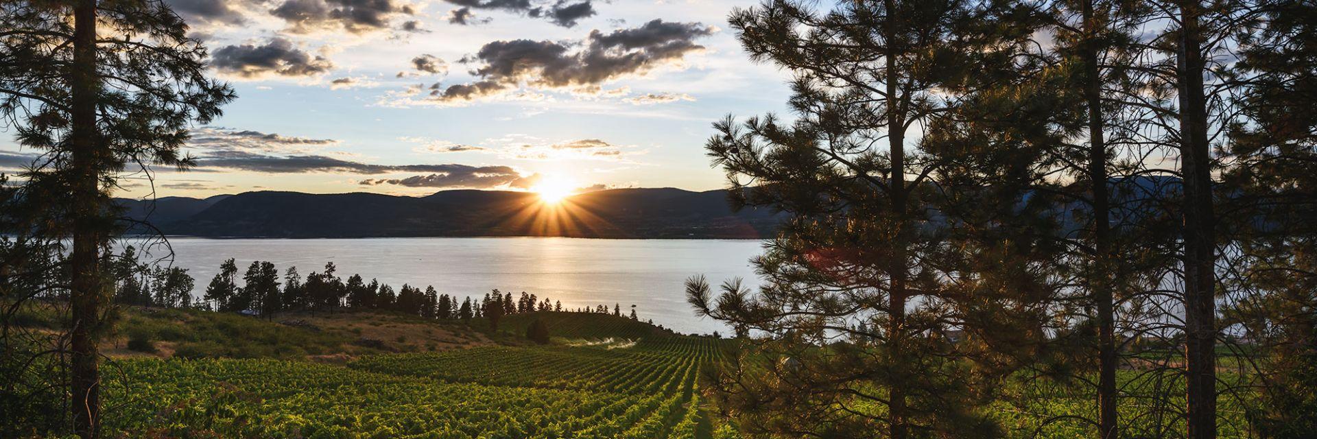 A sunrise over a lake in British Columbia