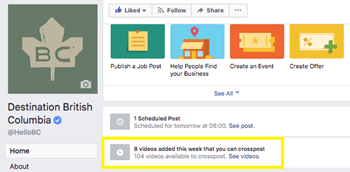 Facebook Crossposting 101: Share Your Video