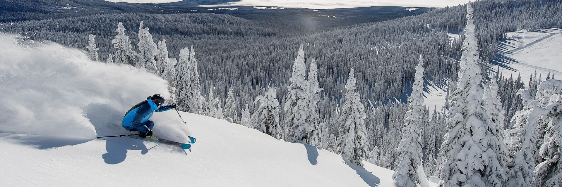 A skier going down a hill with snow flying behind them.