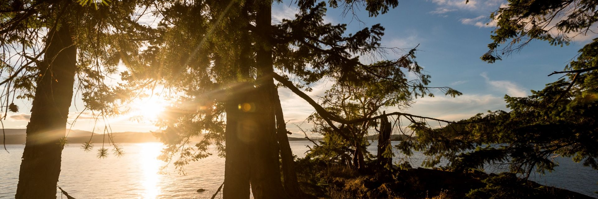 A person relaxing in a hammock amongst the trees watching the sunset on Pender Island
